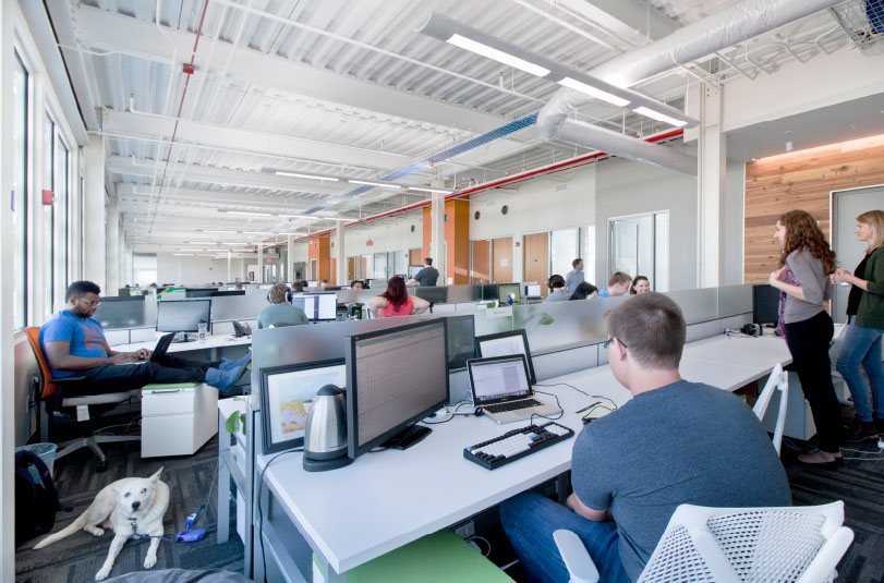 out of the box pros and cons of the open plan office for startups
